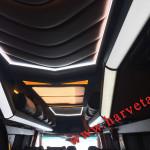 potolok_mikroavtobus